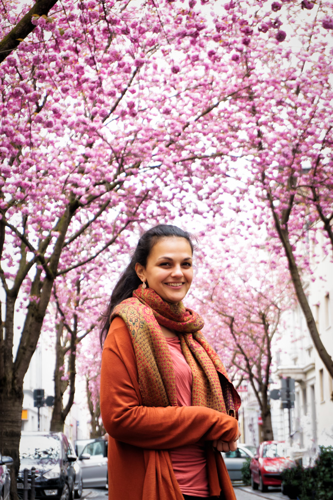 KW13 - Cherry Blossom
